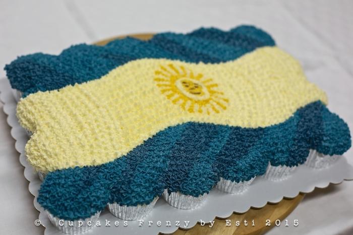Argentinian flag 1